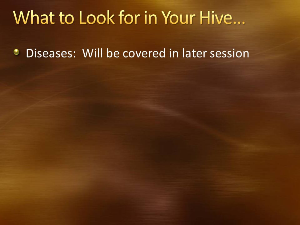 Diseases: Will be covered in later session