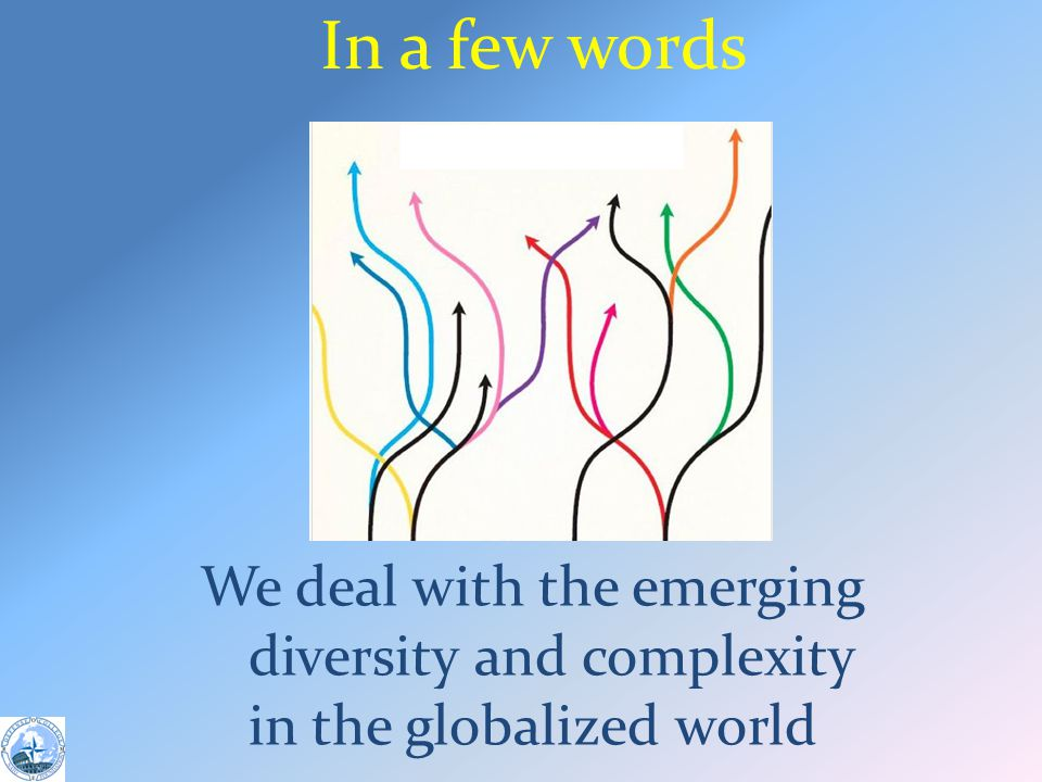 In a few words We deal with the emerging diversity and complexity in the globalized world