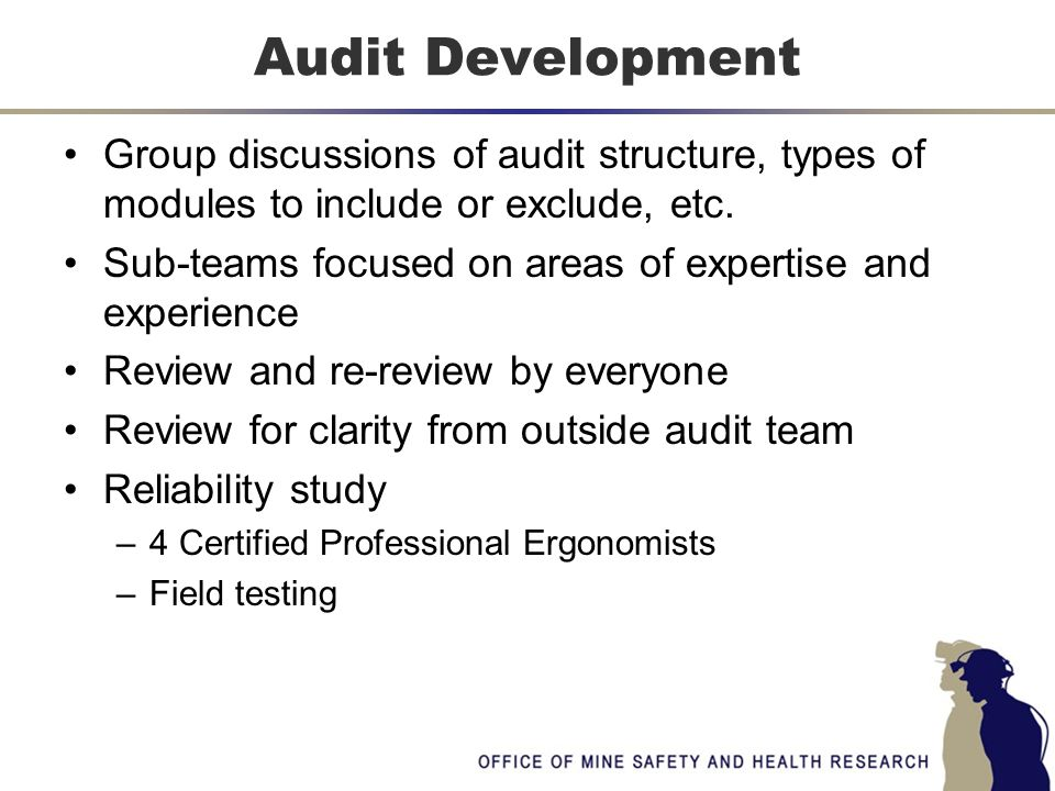 Group discussions of audit structure, types of modules to include or exclude, etc.