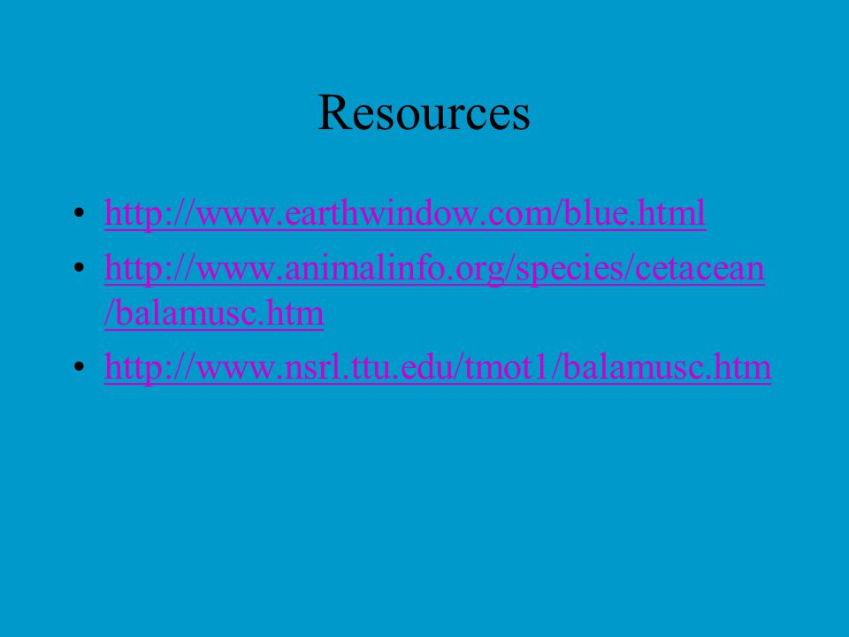 Resources http://www.earthwindow.com/blue.html http://www.animalinfo.org/species/cetacean /balamusc.htmhttp://www.animalinfo.org/species/cetacean /balamusc.htm http://www.nsrl.ttu.edu/tmot1/balamusc.htm