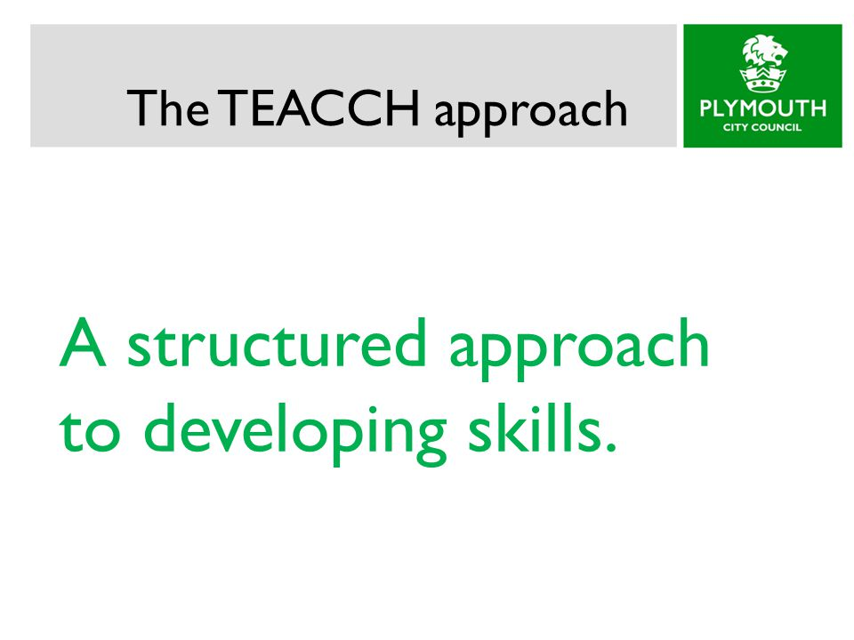 The TEACCH approach A structured approach to developing skills.
