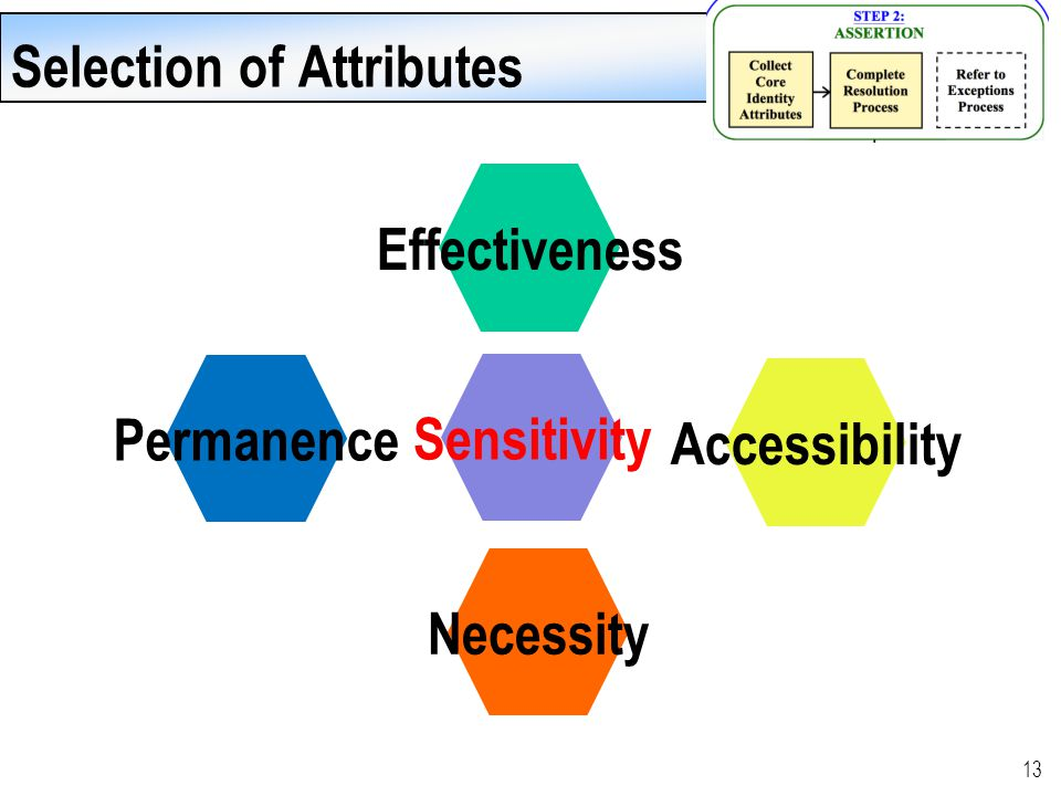 13 Effectiveness Accessibility Sensitivity Necessity Permanence Selection of Attributes