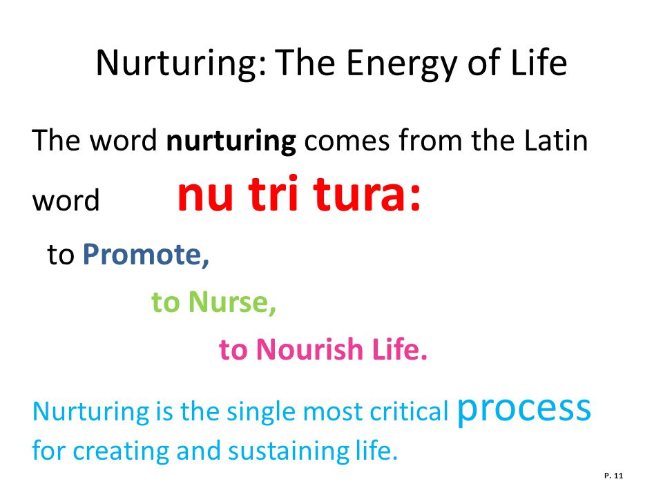 Nurturing: The Energy of Life The word nurturing comes from the Latin word nu tri tura: to Promote, to Nurse, to Nourish Life.