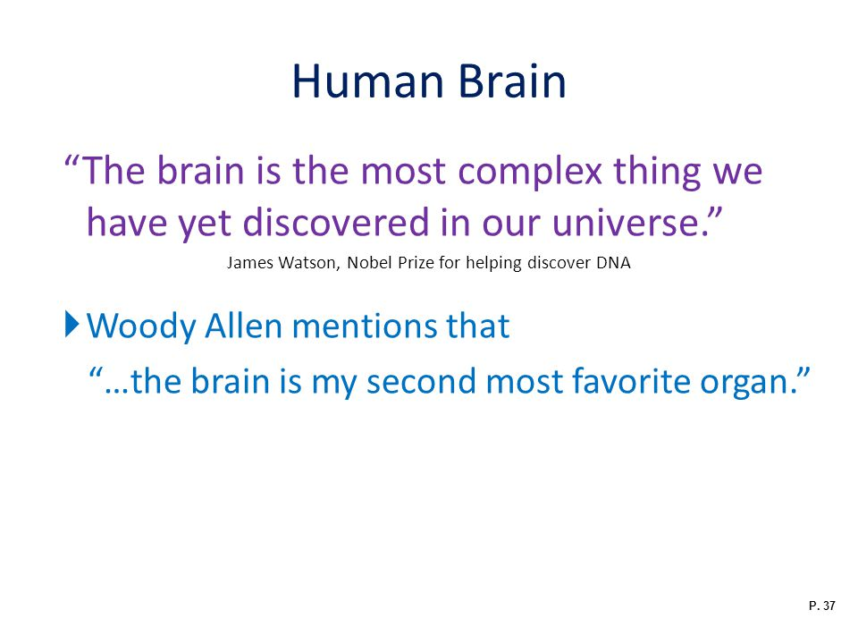 Human Brain The brain is the most complex thing we have yet discovered in our universe. James Watson, Nobel Prize for helping discover DNA  Woody Allen mentions that …the brain is my second most favorite organ. P.