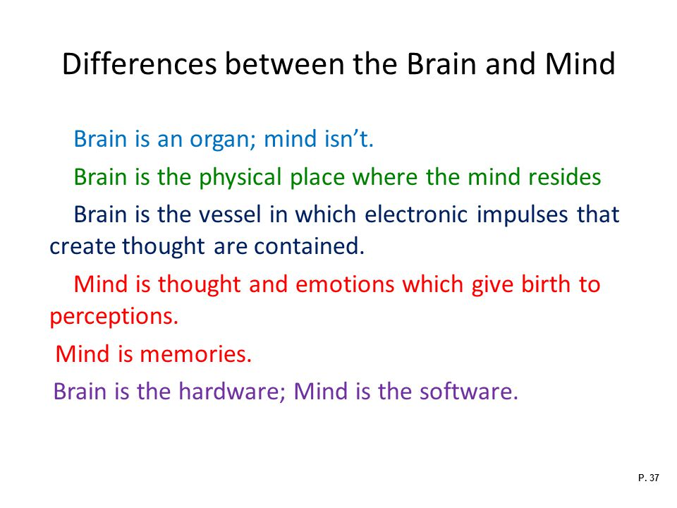 Differences between the Brain and Mind Brain is an organ; mind isn't.