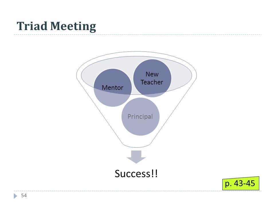 Triad Meeting 54 Success!! PrincipalMentor New Teacher p. 43-45