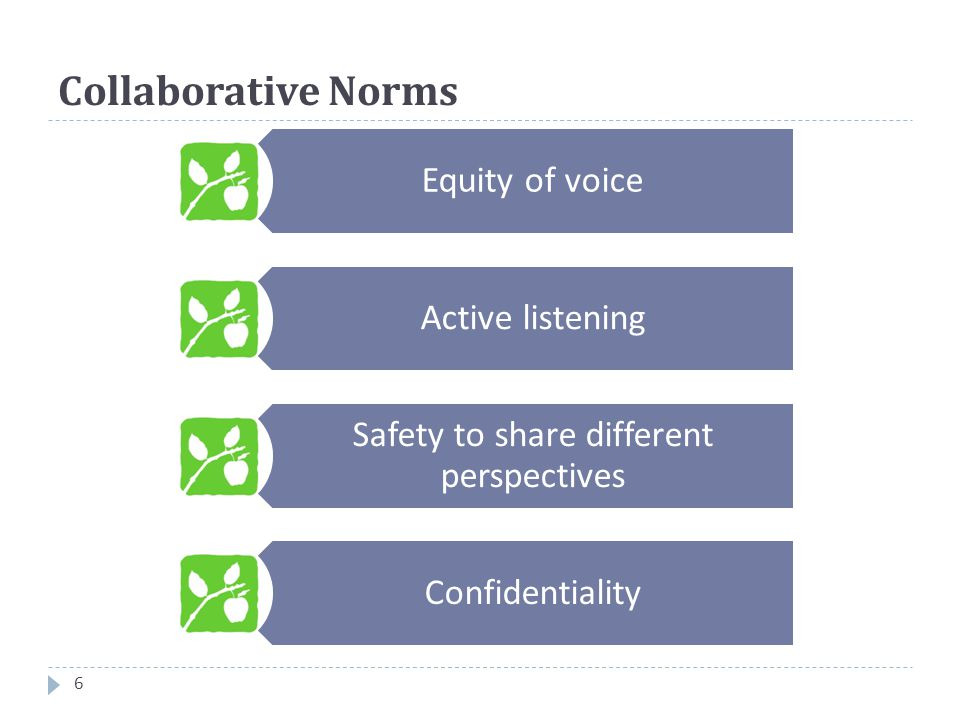 Collaborative Norms 6 Equity of voice Active listening Safety to share different perspectives Confidentiality