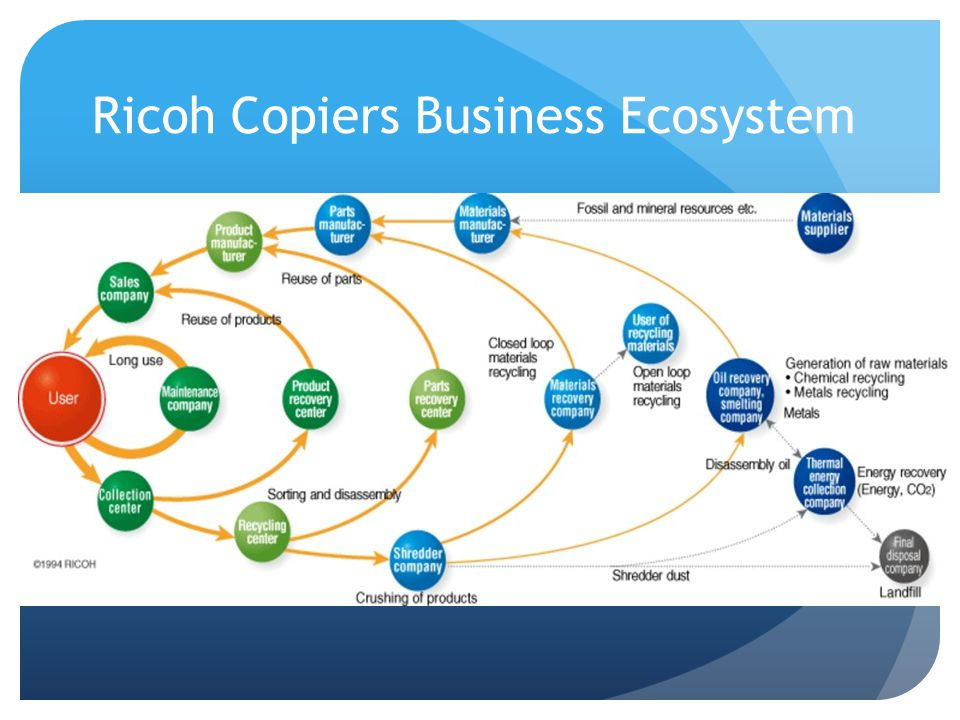 Ricoh Copiers Business Ecosystem