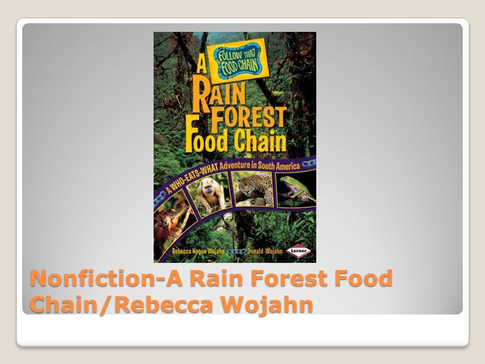 Nonfiction-A Rain Forest Food Chain/Rebecca Wojahn