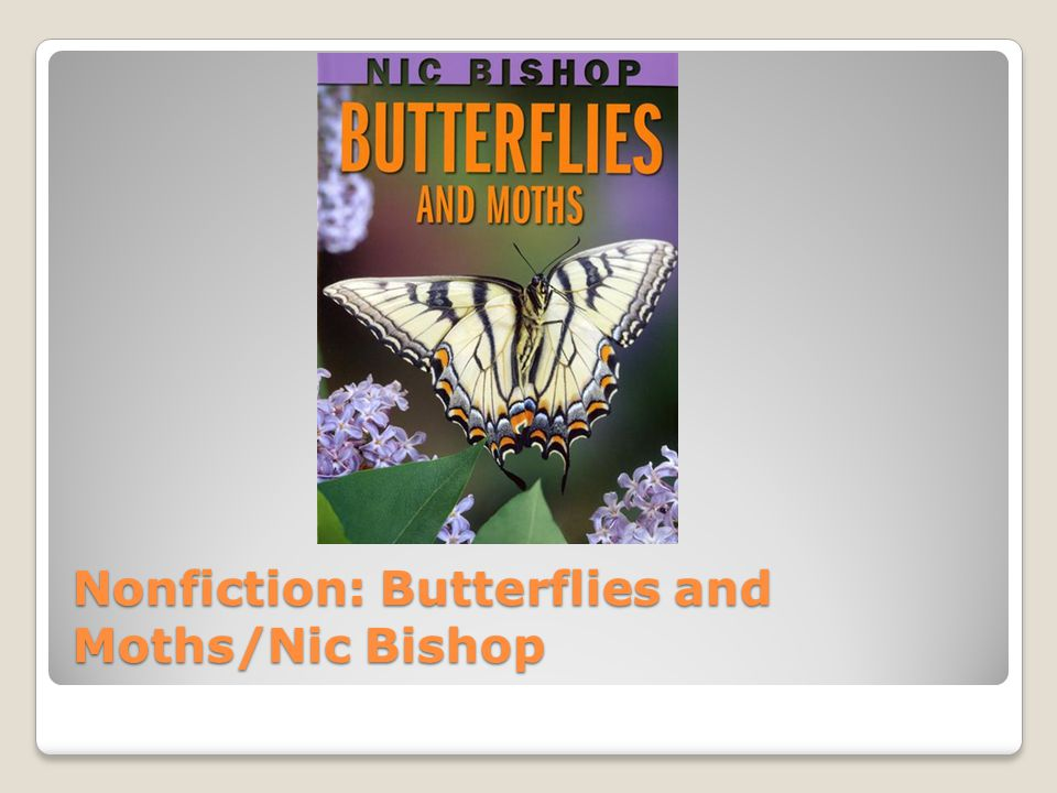 Nonfiction: Butterflies and Moths/Nic Bishop