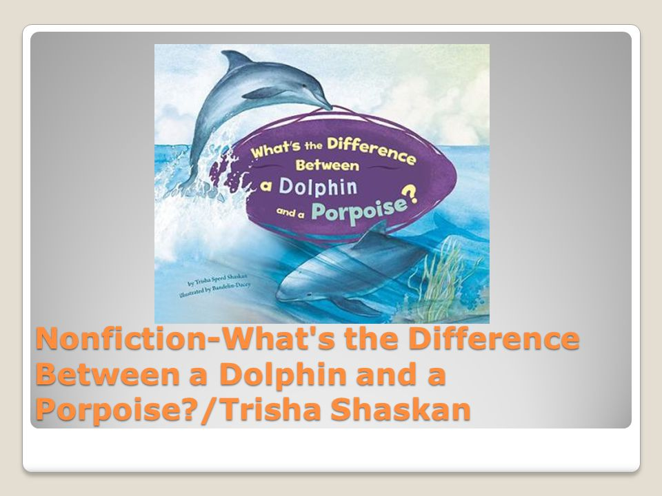 Nonfiction-What s the Difference Between a Dolphin and a Porpoise /Trisha Shaskan