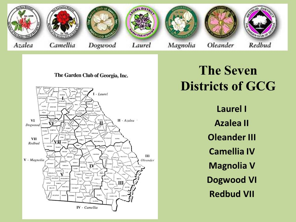 The Seven Districts of GCG Laurel I Azalea II Oleander III Camellia IV Magnolia V Dogwood VI Redbud VII