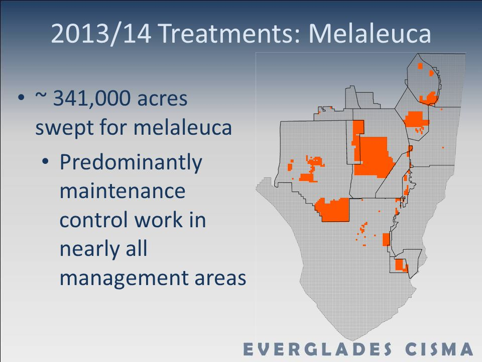 2013/14 Treatments: Melaleuca ~ 341,000 acres swept for melaleuca Predominantly maintenance control work in nearly all management areas