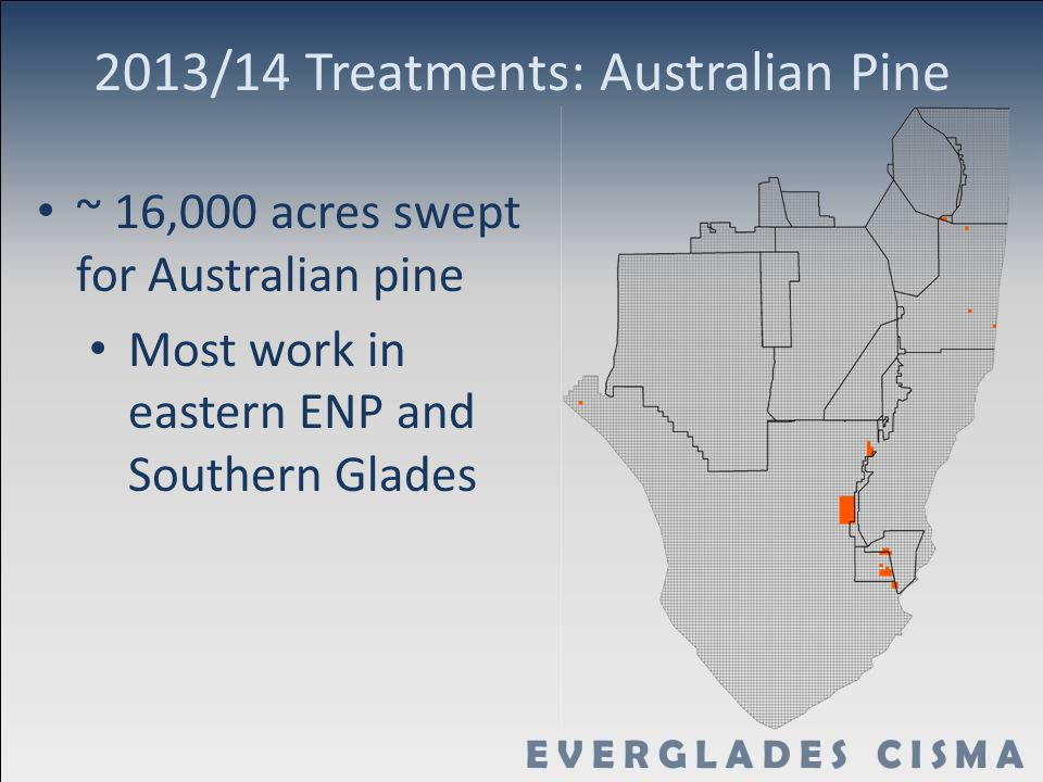 2013/14 Treatments: Australian Pine ~ 16,000 acres swept for Australian pine Most work in eastern ENP and Southern Glades