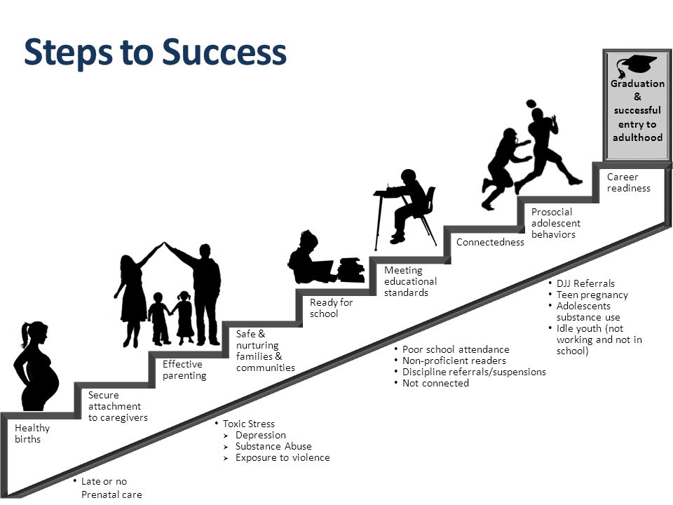 Steps to Success Healthy births Secure attachment to caregivers Effective parenting Safe & nurturing families & communities Meeting educational standards Ready for school Career readiness Connectedness Graduation & successful entry to adulthood Poor school attendance Non-proficient readers Discipline referrals/suspensions Not connected Toxic Stress  Depression  Substance Abuse  Exposure to violence Late or no Prenatal care DJJ Referrals Teen pregnancy Adolescents substance use Idle youth (not working and not in school) Prosocial adolescent behaviors