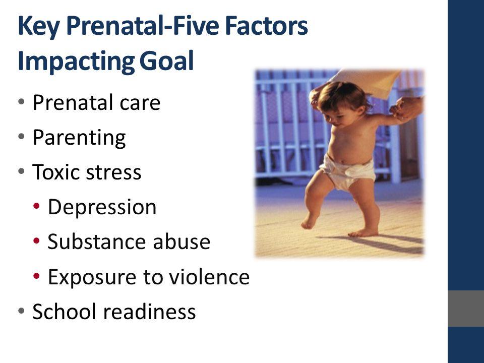 Prenatal care Parenting Toxic stress Depression Substance abuse Exposure to violence School readiness Key Prenatal-Five Factors Impacting Goal
