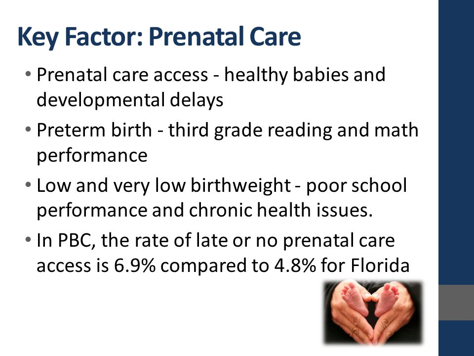Prenatal care access - healthy babies and developmental delays Preterm birth - third grade reading and math performance Low and very low birthweight - poor school performance and chronic health issues.