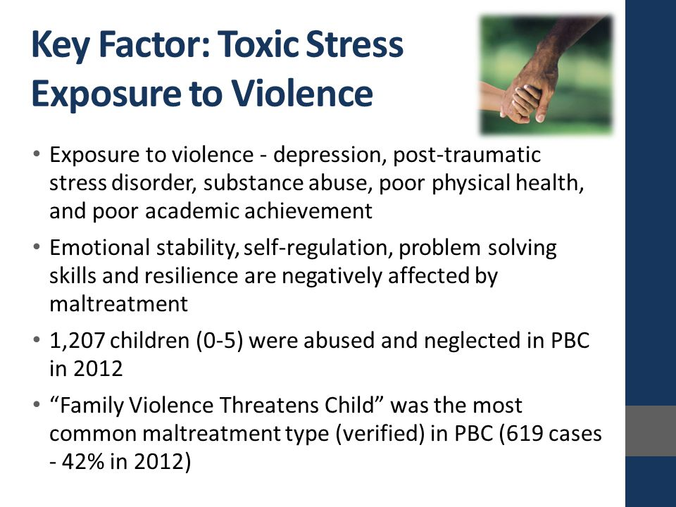 Exposure to violence - depression, post-traumatic stress disorder, substance abuse, poor physical health, and poor academic achievement Emotional stability, self-regulation, problem solving skills and resilience are negatively affected by maltreatment 1,207 children (0-5) were abused and neglected in PBC in 2012 Family Violence Threatens Child was the most common maltreatment type (verified) in PBC (619 cases - 42% in 2012) Key Factor: Toxic Stress Exposure to Violence