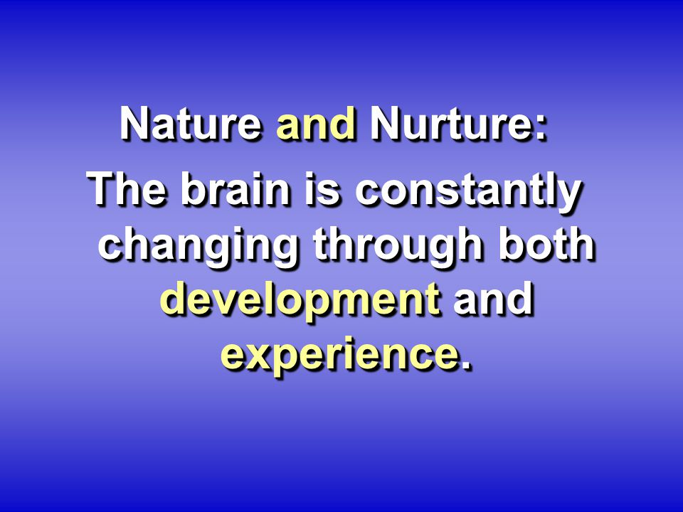 Nature and Nurture: The brain is constantly changing through both development and experience. Nature and Nurture: The brain is constantly changing thr