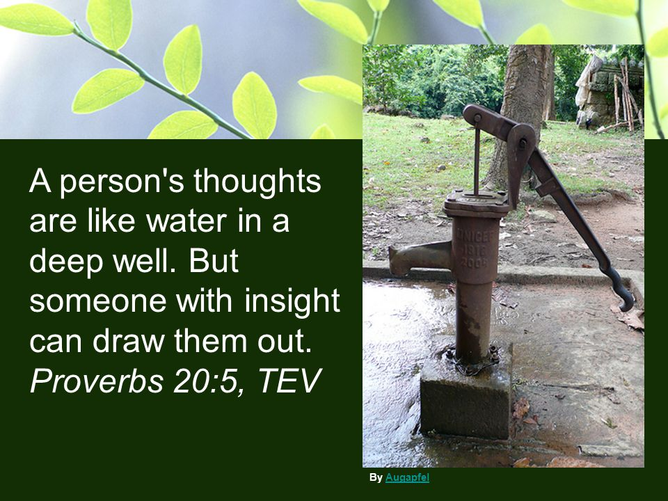A person's thoughts are like water in a deep well. But someone with insight can draw them out. Proverbs 20:5, TEV By AugapfelAugapfel