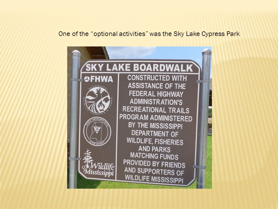One of the optional activities was the Sky Lake Cypress Park