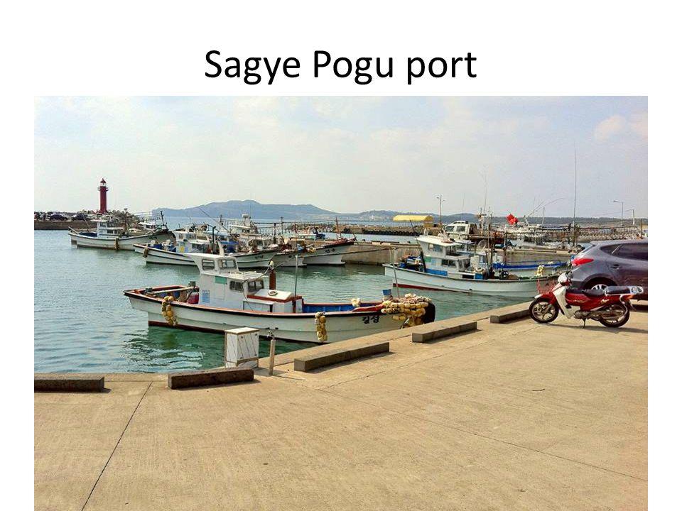Sagye Pogu port