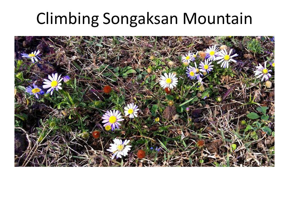 Climbing Songaksan Mountain