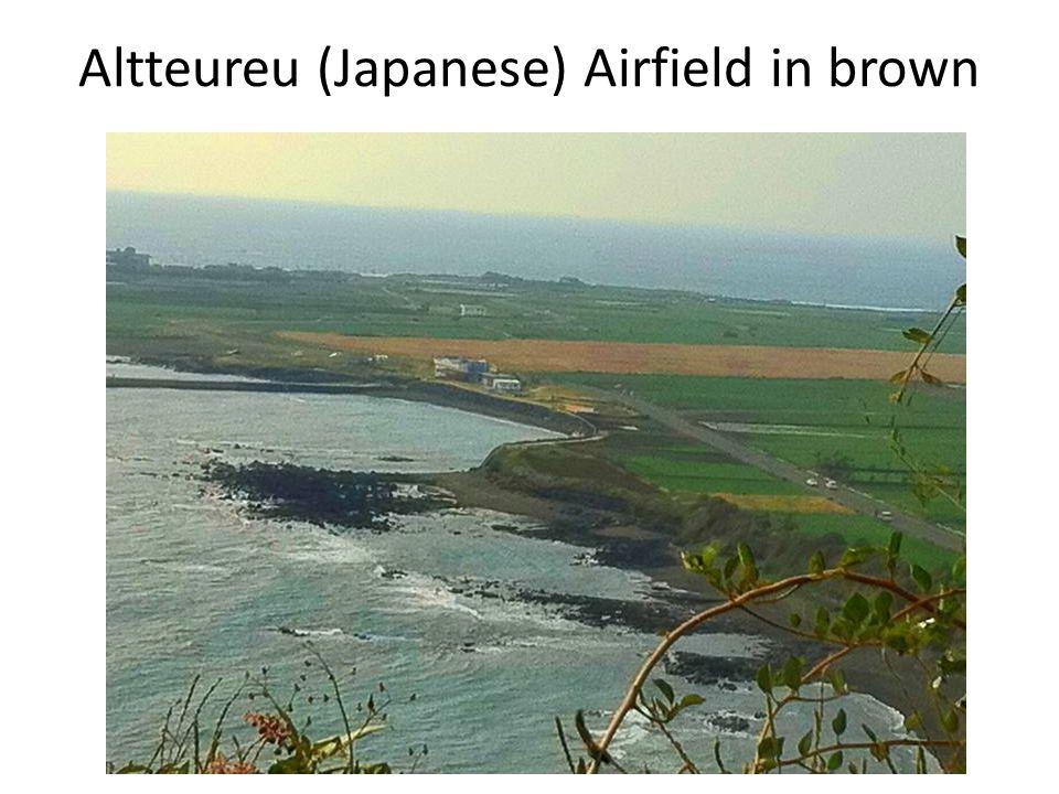 Altteureu (Japanese) Airfield in brown