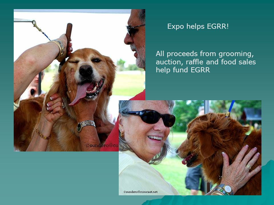 Expo helps EGRR! All proceeds from grooming, auction, raffle and food sales help fund EGRR