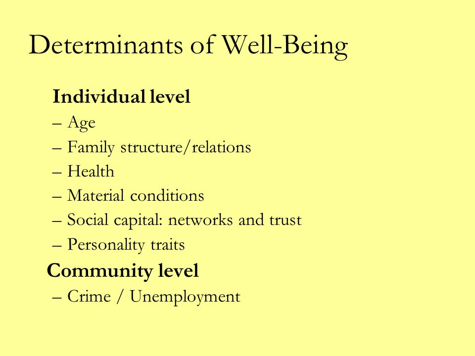Determinants of Well-Being Individual level –Age –Family structure/relations –Health –Material conditions –Social capital: networks and trust –Personality traits Community level –Crime / Unemployment