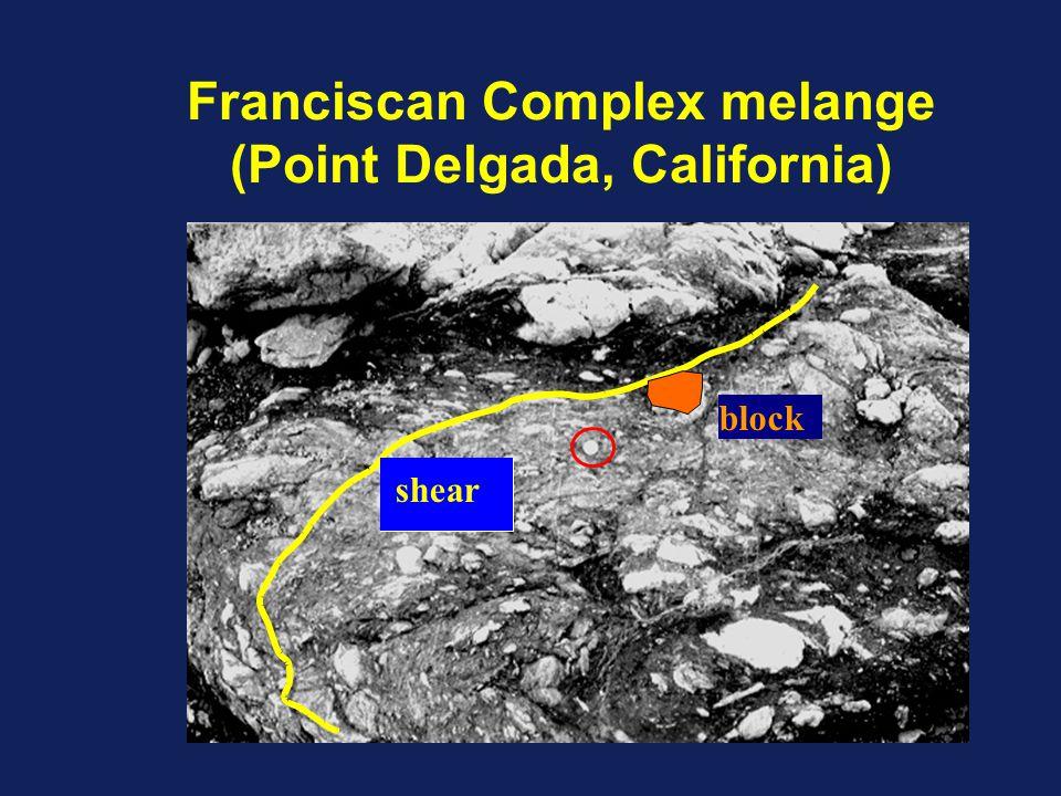 Franciscan Complex melange (Point Delgada, California) shear block
