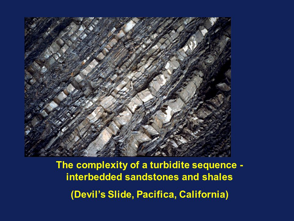 The complexity of a turbidite sequence - interbedded sandstones and shales (Devil's Slide, Pacifica, California)
