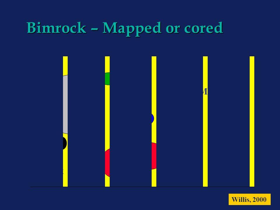 Bimrock – Mapped or cored Matrix Willis, 2000