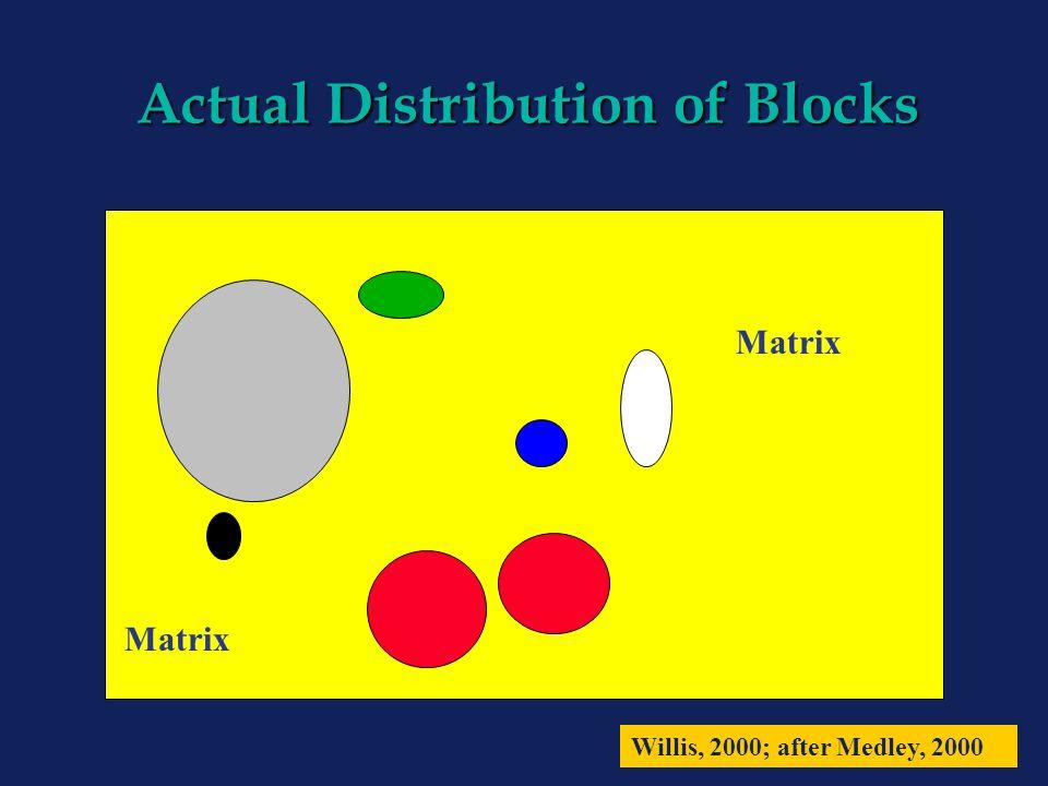 Actual Distribution of Blocks Matrix Willis, 2000; after Medley, 2000