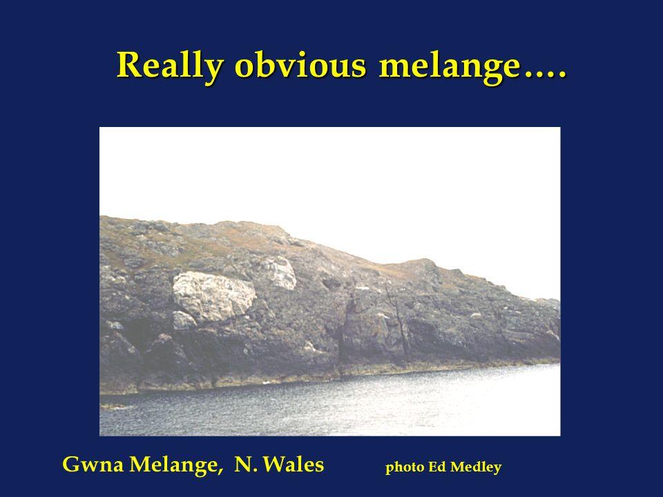 Really obvious melange…. Really obvious melange…. Gwna Melange, N. Wales photo Ed Medley