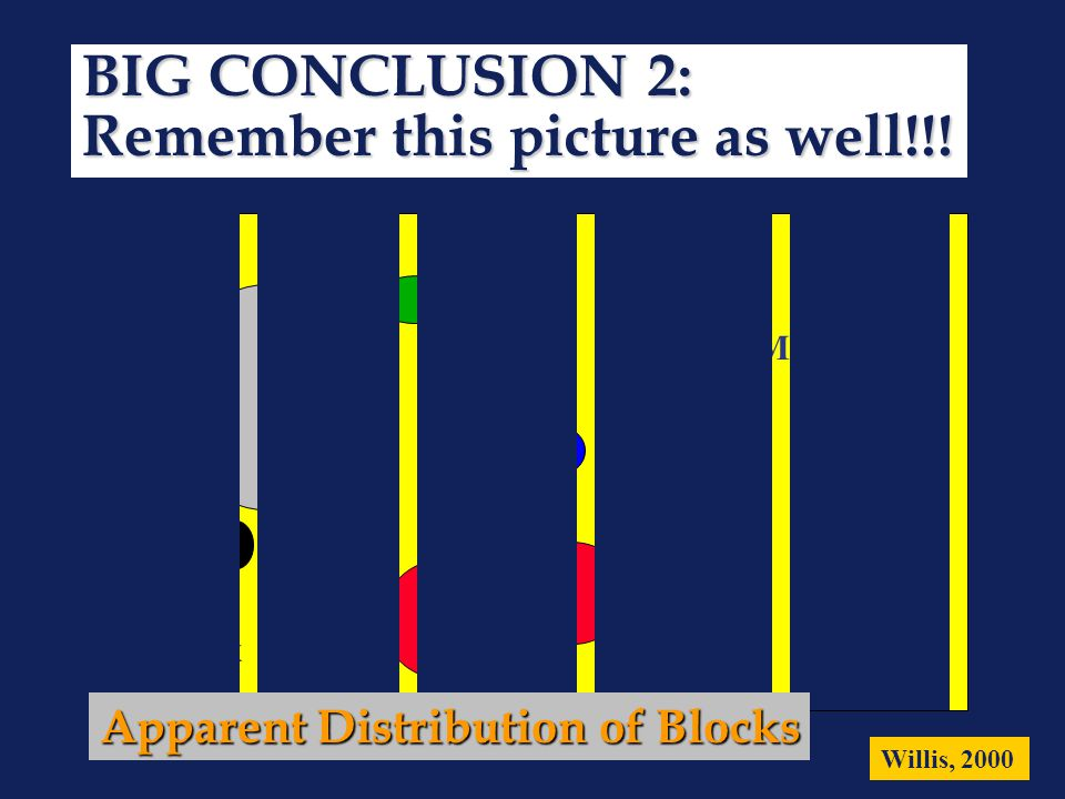 Matrix Willis, 2000 Apparent Distribution of Blocks BIG CONCLUSION 2: Remember this picture as well!!!