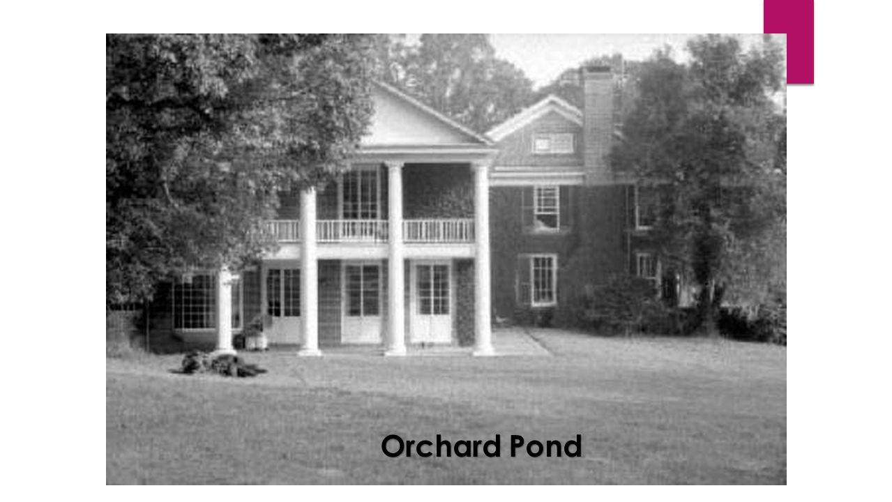 Orchard Pond