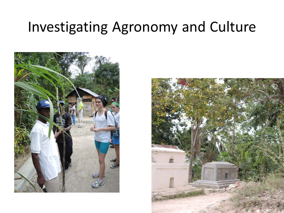 Investigating Agronomy and Culture