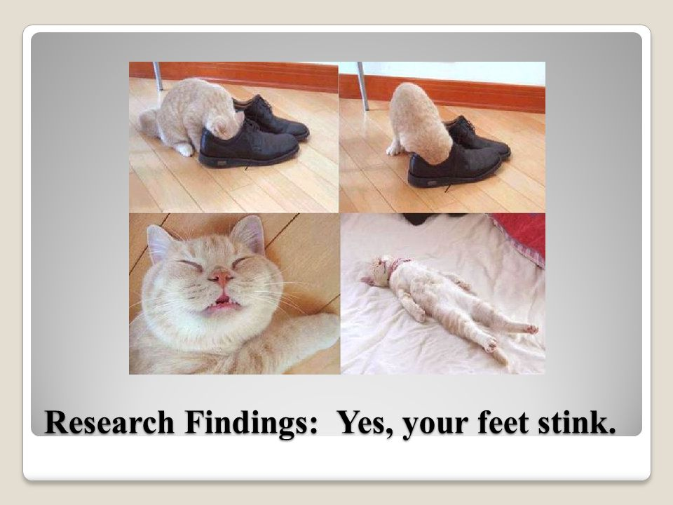 Research Findings: Yes, your feet stink.