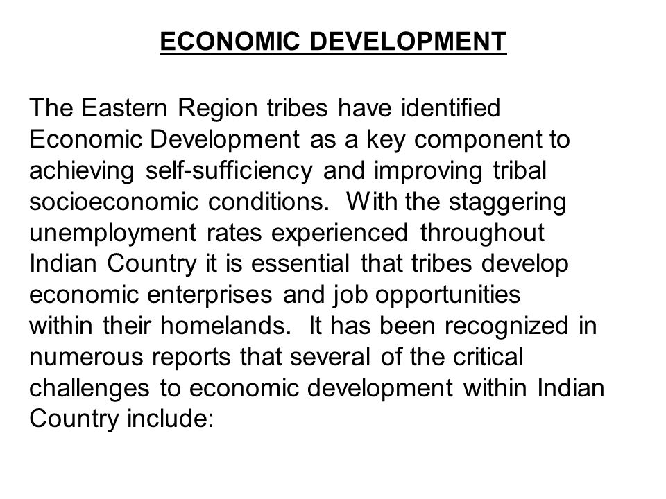ECONOMIC DEVELOPMENT The Eastern Region tribes have identified Economic Development as a key component to achieving self-sufficiency and improving tribal socioeconomic conditions.