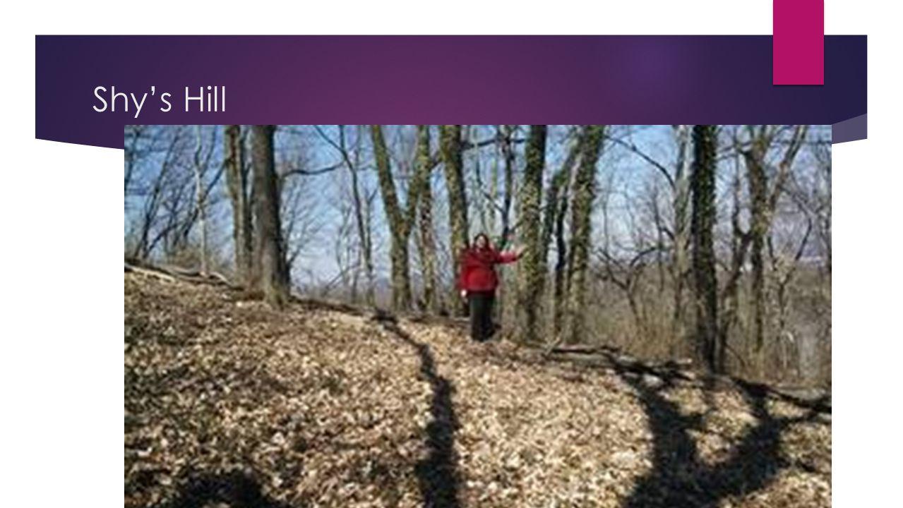 Shy's Hill
