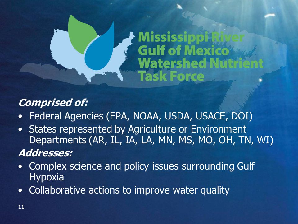 11 Comprised of: Federal Agencies (EPA, NOAA, USDA, USACE, DOI) States represented by Agriculture or Environment Departments (AR, IL, IA, LA, MN, MS, MO, OH, TN, WI) Addresses: Complex science and policy issues surrounding Gulf Hypoxia Collaborative actions to improve water quality