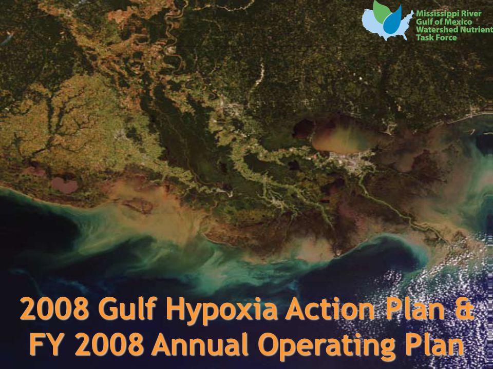 12 2008 Gulf Hypoxia Action Plan & FY 2008 Annual Operating Plan