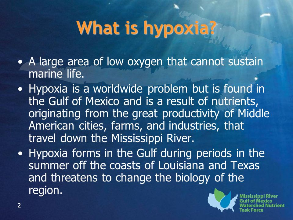 2 A large area of low oxygen that cannot sustain marine life. Hypoxia is a worldwide problem but is found in the Gulf of Mexico and is a result of nut