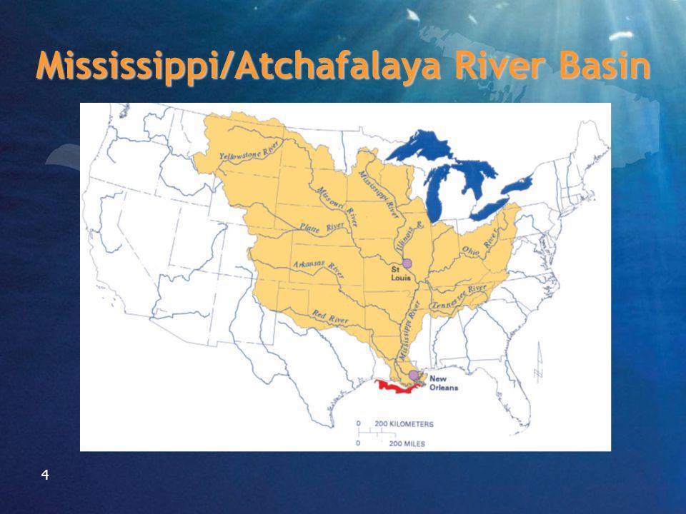 4 Mississippi/Atchafalaya River Basin