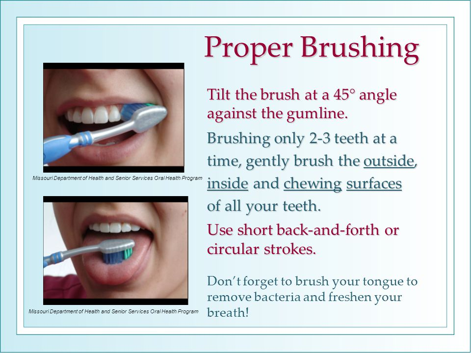 Proper Brushing Tilt the brush at a 45° angle against the gumline. Brushing only 2-3 teeth at a time, gently brush the outside, inside and chewing sur