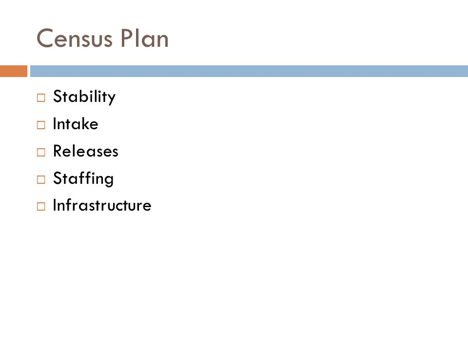 Census Plan  Stability  Intake  Releases  Staffing  Infrastructure