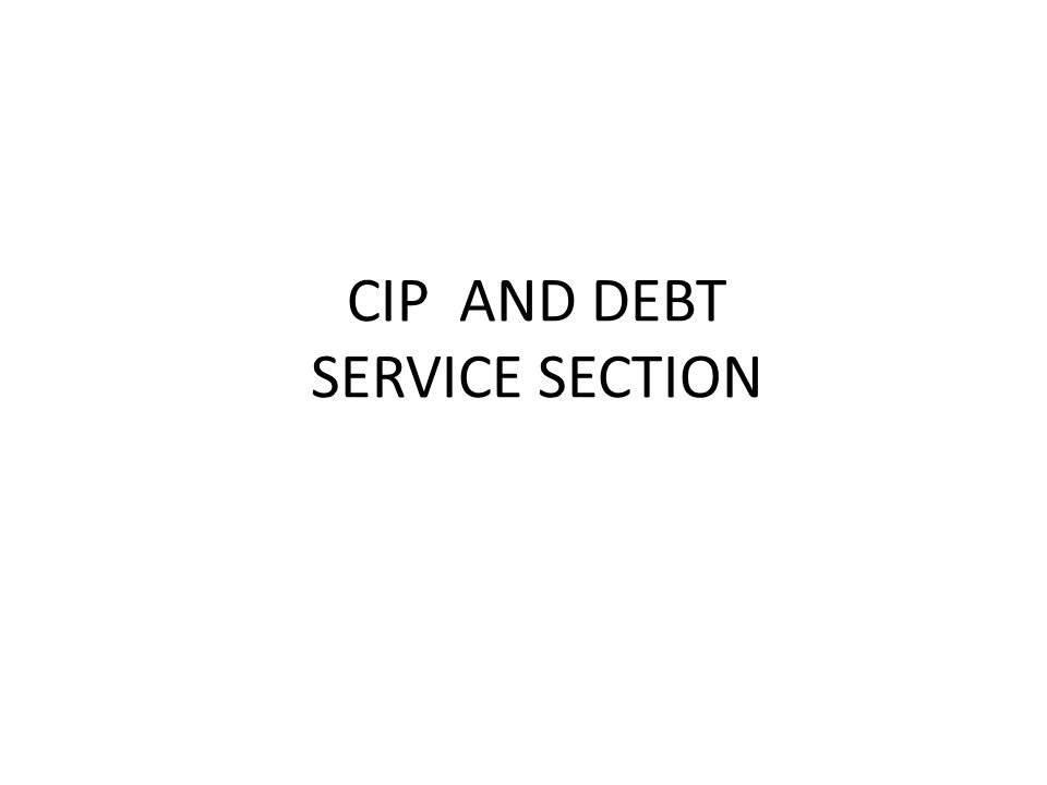 CIP AND DEBT SERVICE SECTION