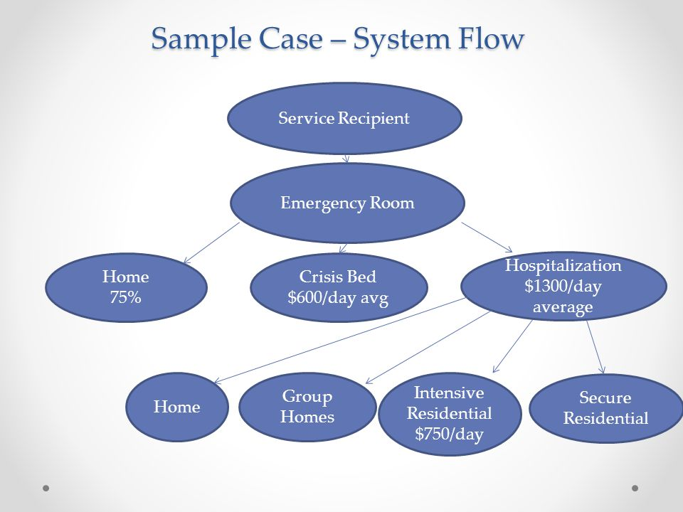 Service Recipient Emergency Room Home 75% Crisis Bed $600/day avg Hospitalization $1300/day average Home Group Homes Intensive Residential $750/day Secure Residential Sample Case – System Flow