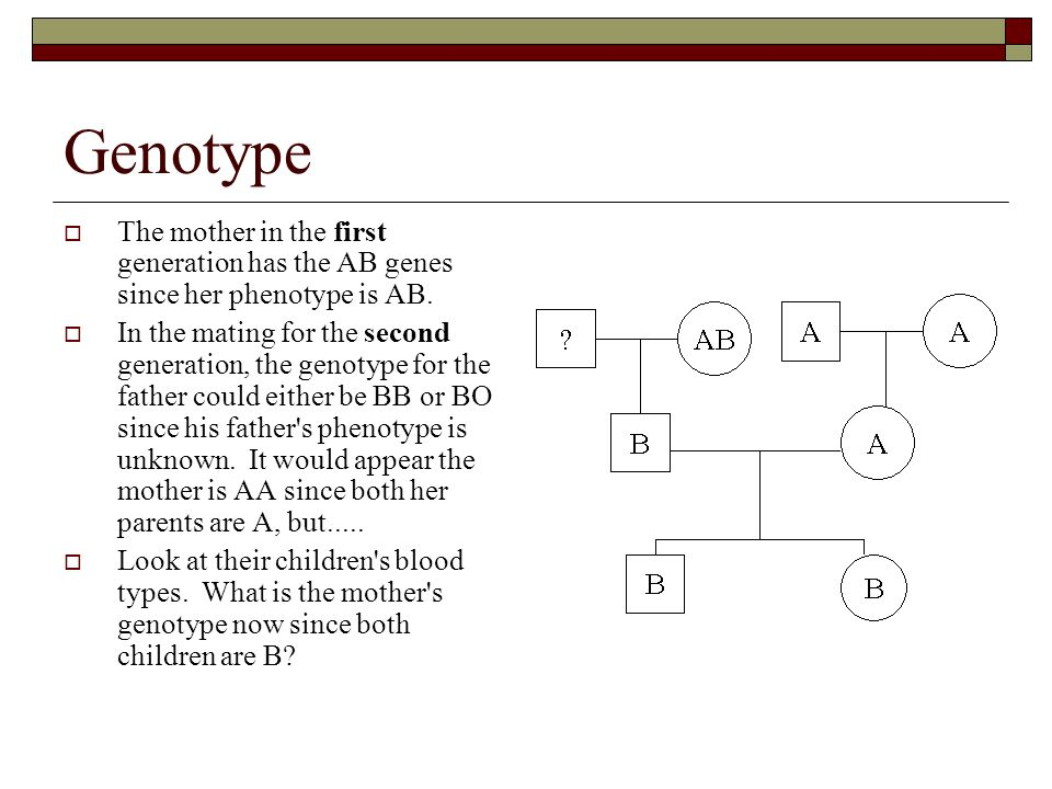 Genotype  The mother in the first generation has the AB genes since her phenotype is AB.